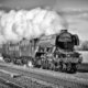 The Flying Scotsman, in steam, in Cambridgeshire.